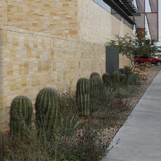 Cancer Center Institute – AZ, USA